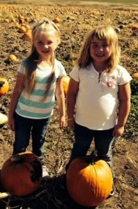 1st pumpkin #2