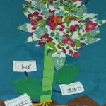 Flower Art - Aliza